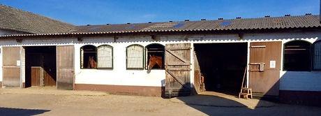 Fensterboxen-hinten-1-600x217.jpg