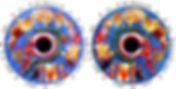Diagnostico por el iris. Bernard Jensen, iridologia, signos iridologicos