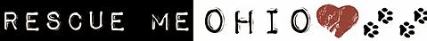 horizontal logo-white.png 2013-9-13-16:47:10 2015-10-8-15:31:56
