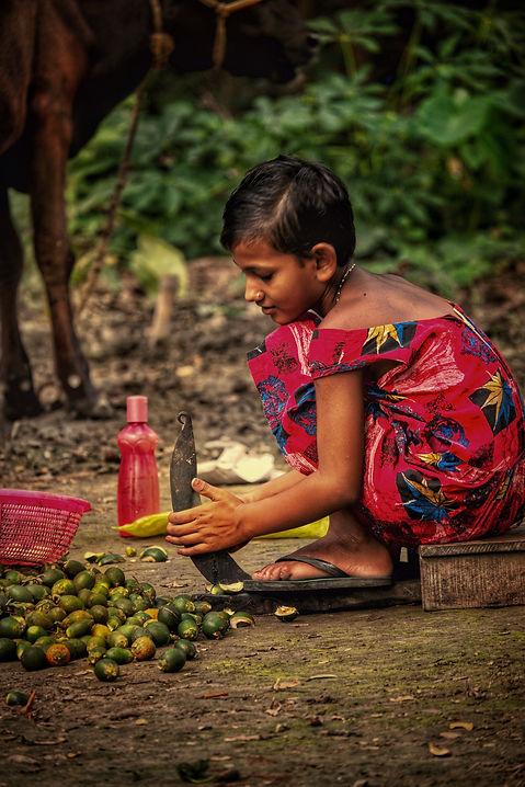 Image by sanjoy saha