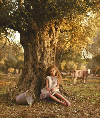 dorit-lombroso-girl-under-olive-tree