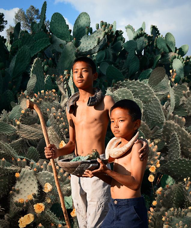 Dorit-Lombroso-boys-with-cacti