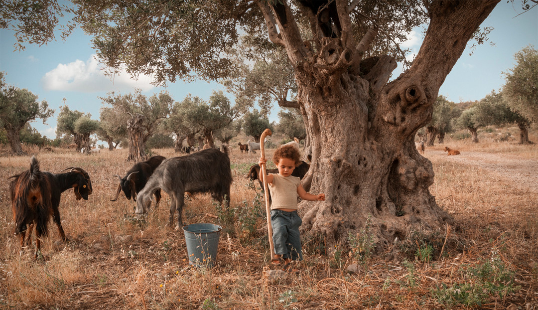 dorit-lombroso-boy-with-goats