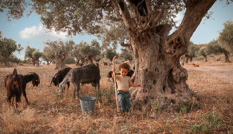 dorit-lombroso-boy-with-goats