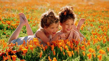 dorit-lombroso-girls-in-flower-field