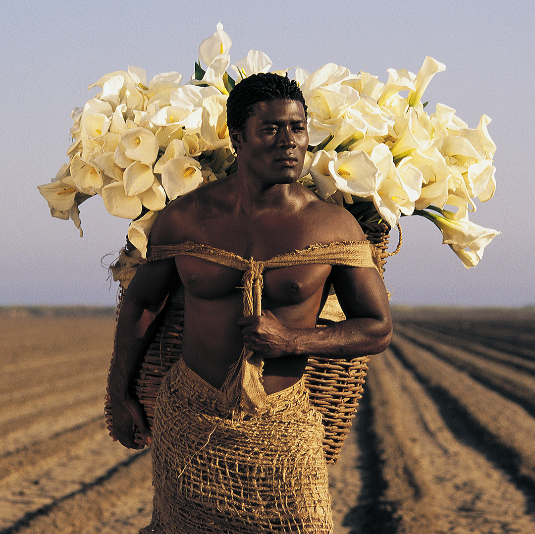 Dorit-Lombroso-Man-With-Calla-Lilies-300
