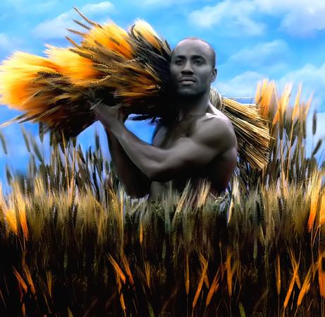 Dorit-Lombroso-Man-In-wheat-Field
