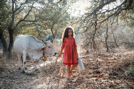 dorit-lombroso-girl-with-cow