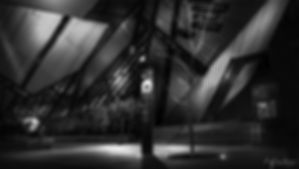 romblackandwhitecropped-1fi.jpg