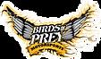 BirdsOfPrey.png