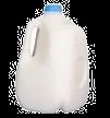 MilkJug_edited.png