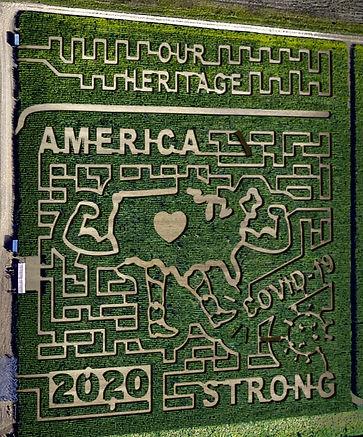 2020 maize.jpg