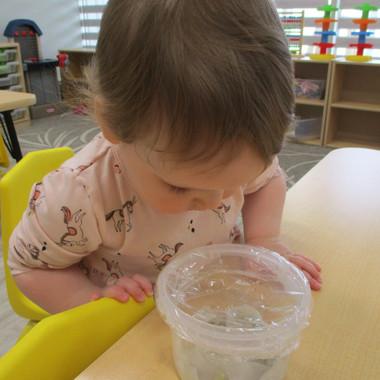 Kids Avenue Daycare Calgary Planting Activity