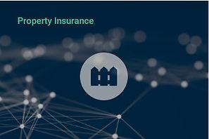 PropertyIns.jpg