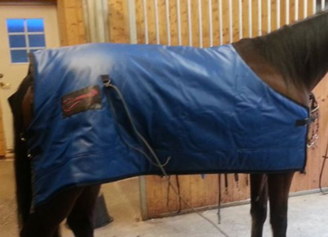 Horsevib - vibroacoustic therapy blanket for horses