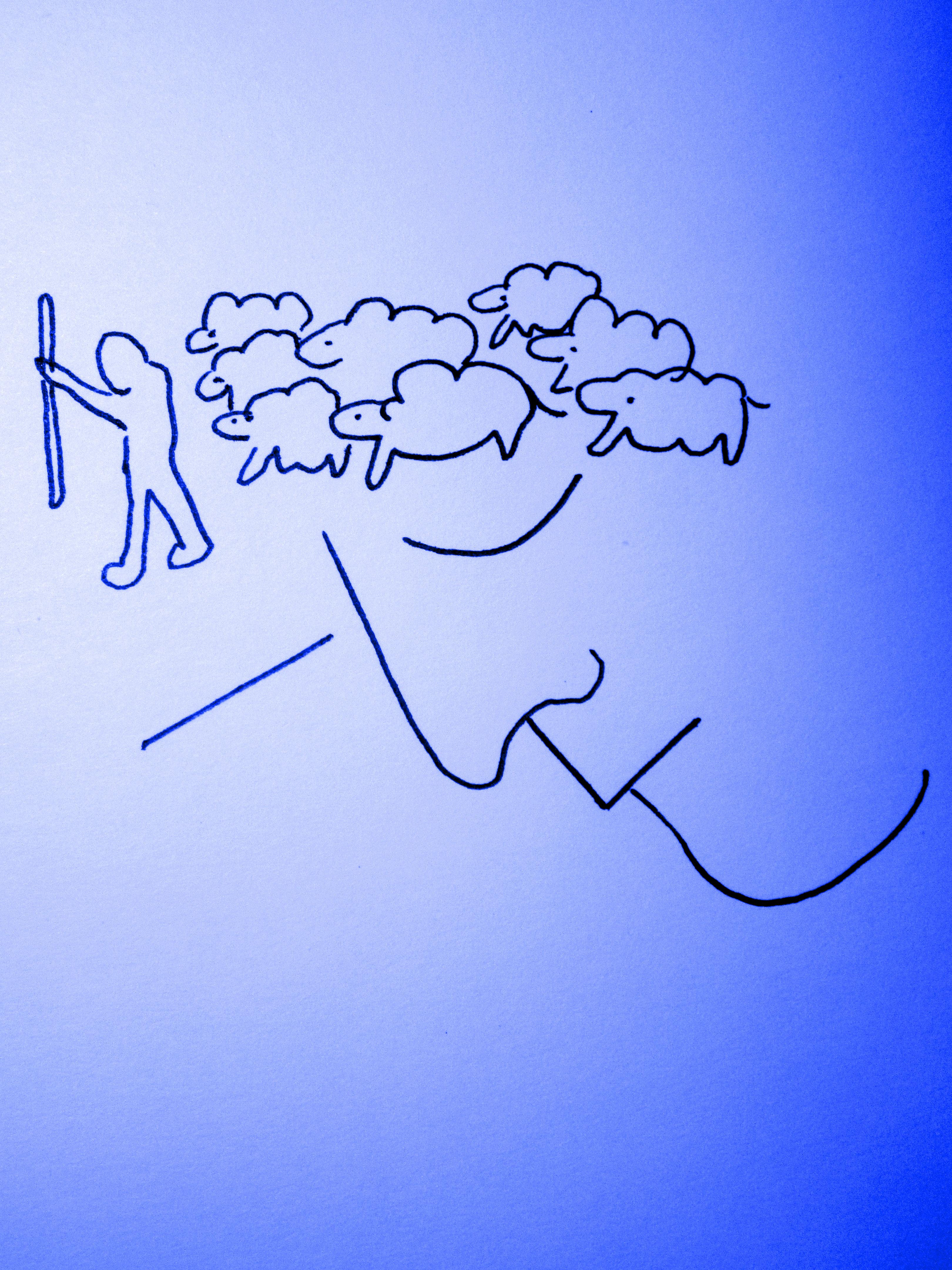 dreaming sheep