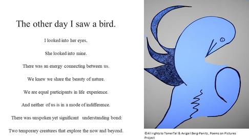 I saw a bird