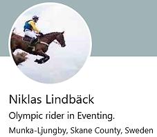 Niklas Sweden.png