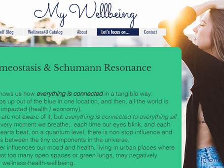 Homeostasis and Schumann Resonance