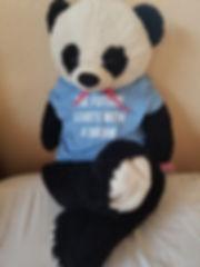 panda bear with shirt.jpeg