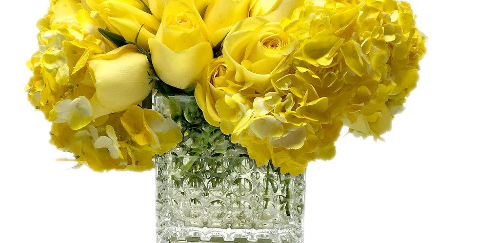 Yellow Variety