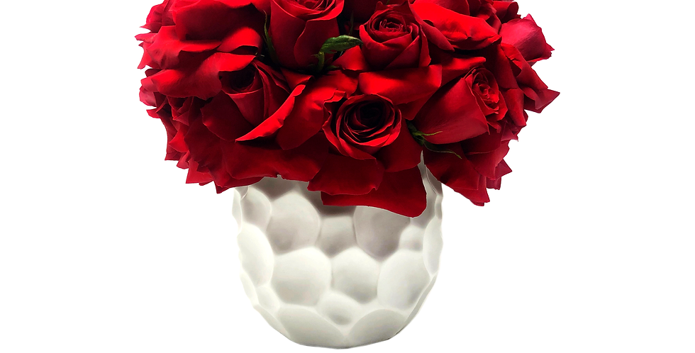 Large Red Reflexed Roses