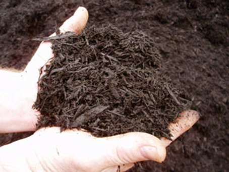 Mulching in Late Fall or Early Winter
