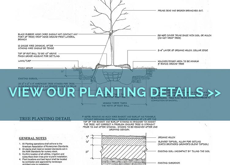Landscape Peer Group