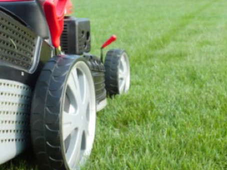 Mowing Properly in Spring