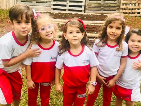 Qual é a escola ideal para meus filhos?