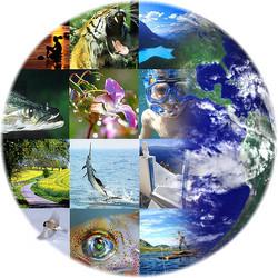 biodiversity-crisis