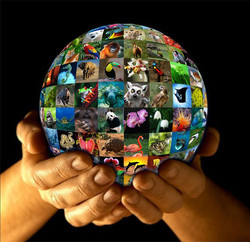 share-planet