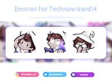 Technowizard14 Emotes.jpg
