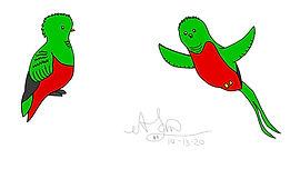ALerma_Quetzal_Design_101320_v01.jpg