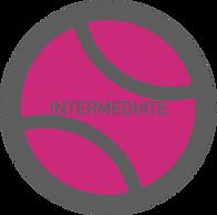 Intermediate2.png