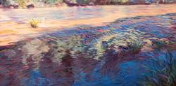Alsea River Reflections