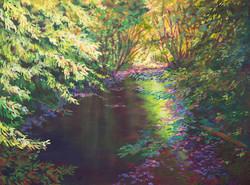 Magical River