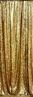 Premium Gold Backdrop