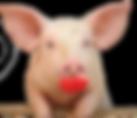 piggy w_lips.png