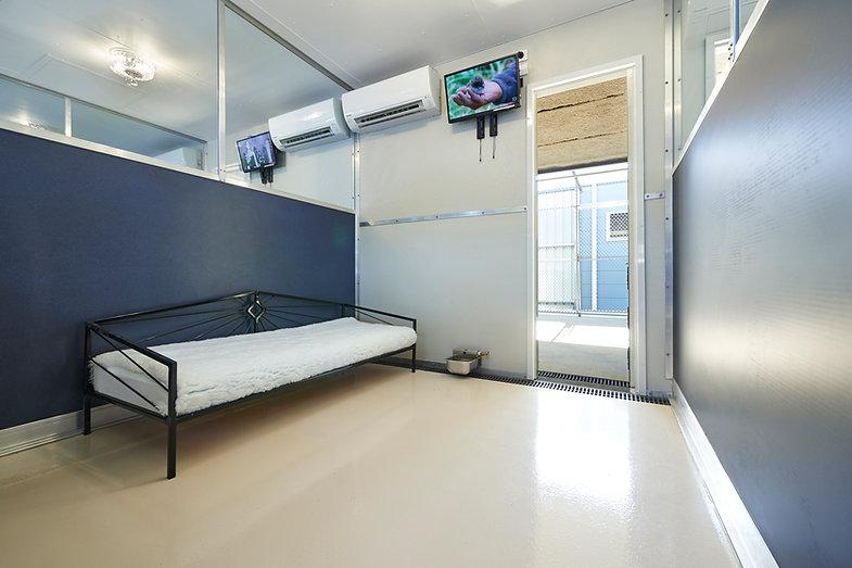 Room1Lux.JPG