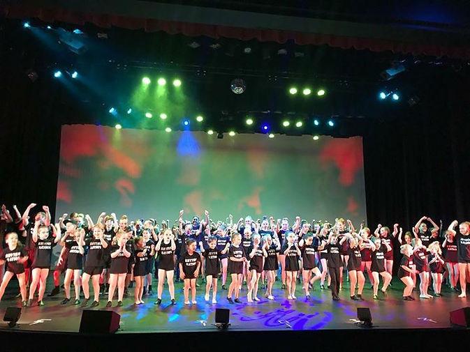 village concert 2017 photo.jpg