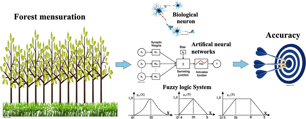 Graphical Abstract - Prognoses of diameter and height of trees of eucalyptus using artificial intelligence