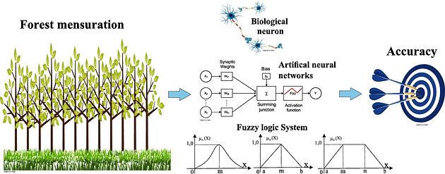 total environment science graphical abstract sci estudo environ intelligence reproducao prognoses eucalyptus diameter artificial trees using