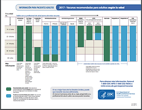Spanish immunzation recommendations for adults age 19 and older