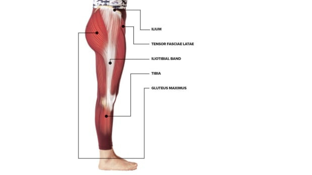 Anatomical drawing of the side of the upper leg, with IT Band and muscles labelled