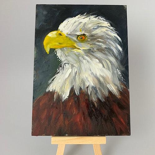 """""""Bald Eagle"""""""