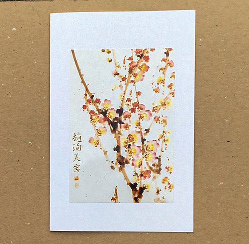 Packet of 2 Pop-Up Cards