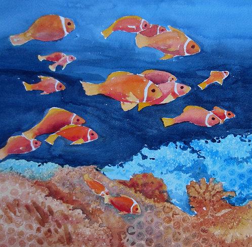 """""""Clown Fish"""""""