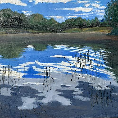 """""""Water Reeds"""""""
