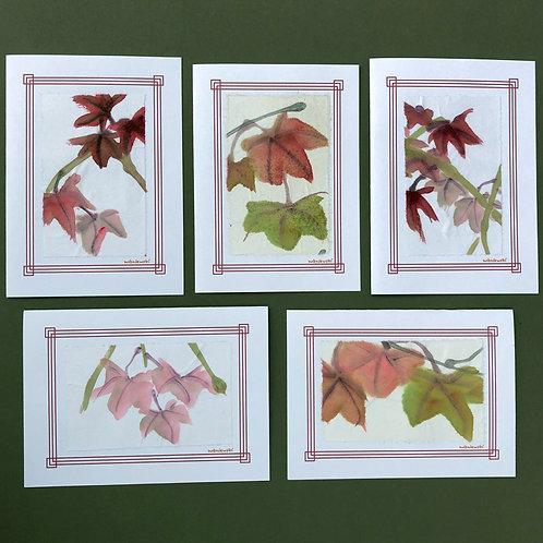 Japanese Maple Leaf cards, 5 pack